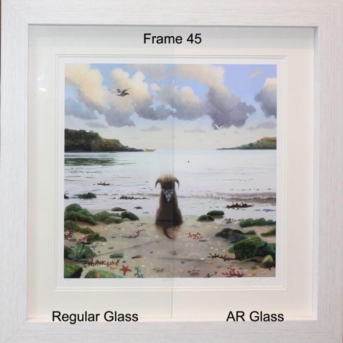 SH Sample, Anti Reflection Glass, clarity, 70% UV protection