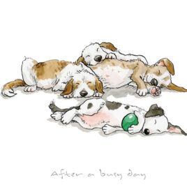 After A Busy Day by Anita Jeram
