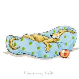 I Love My Bed by Anita Jeram