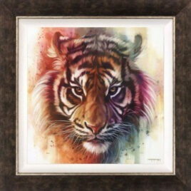 Eye of the Tiger, by Ben Jeffery
