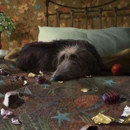 Breakfast in Bed, by Stephen Hanson