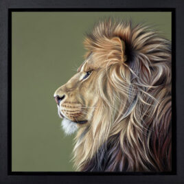 Queen of Savannah, by Darryn Eggleton, lion