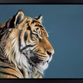 The Sentinel, by Darryn Eggleton, Tiger