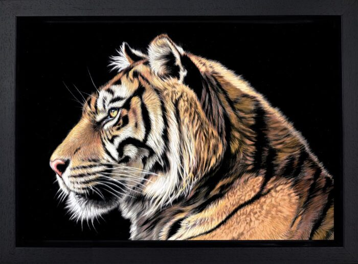 The Wild Side 2 by Darryn Eggleton