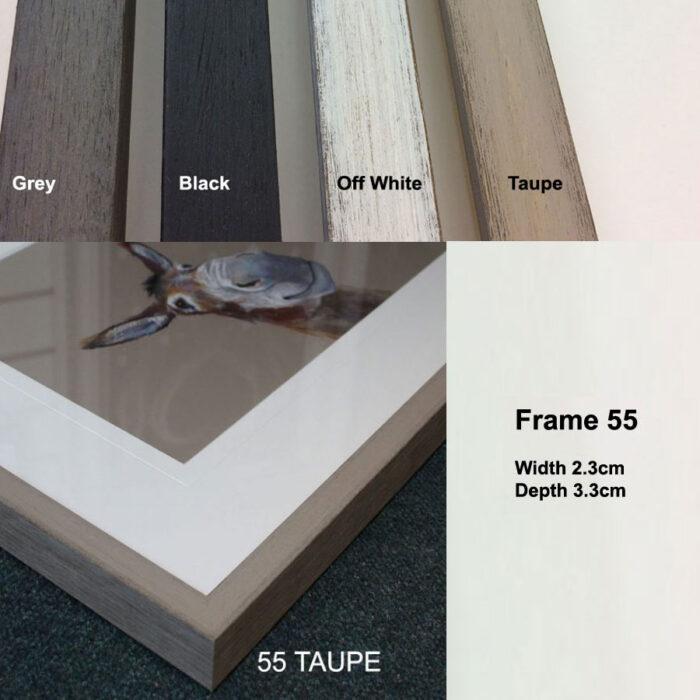 Frame 55 Sample