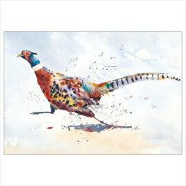 Road Runner, running pheasant,by Jake Winkle