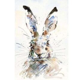 Hare Brained, by Jake Winkle