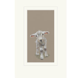 Pascal, Lamb, limited edition print, by Nicky Litchfield