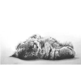Siberian Sunbather By Jamie Boots X