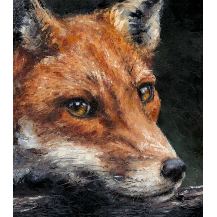 Red Fox Study by Anthony Dobson