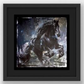Zorro by Rob Hefferan