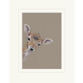 Doe A Deer, by Nicky Litchfield